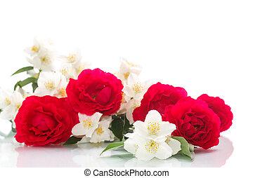 delicaat, boeket van rozen, en, jasmijn