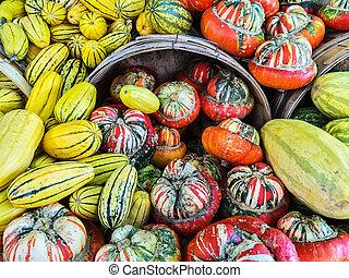 Delicata and Turban squashes at the market