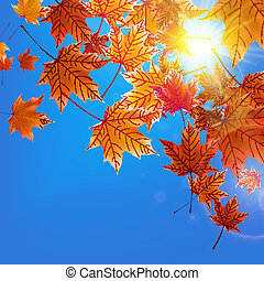 Delicate autumn sun with glare on blue sky.