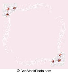Delicate frame with orchid flowers on pink background.