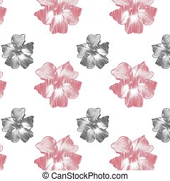 Delicate pink flowers on white background