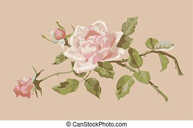 Delicate pink rose and buds on a beige background