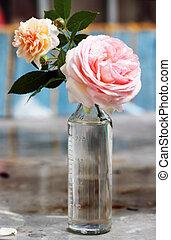 rose in a glass bottle