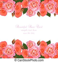 Delicate Pink Roses Card. Vector rose flowers background. Elegant Greeting card or Invitation for wedding, birthday, Valentine's Day, Mother's Day