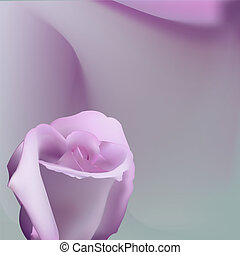 Delicate romantic background with pink rose