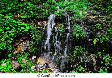delicate waterfall in forest