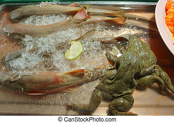 frog, seafood on the market