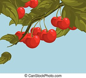Delicious cherry on a branch