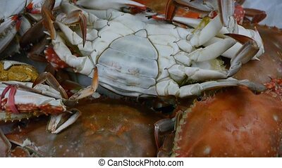 Delicious crab within dial plate.