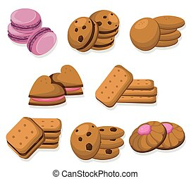 Delicious dessert chocolate cookies set collection vector...
