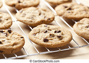 Fresh Chocolate Chip Cookies - Delicious Fresh Chocolate...