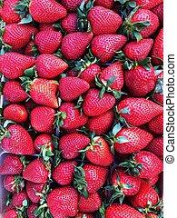 Delicious fresh strawberries on the market macro