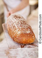 Delicious freshly baked crusty bread