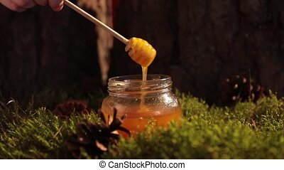 Delicious honey in a jar on a forest glade. Honey flows from...