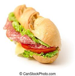 delicious salami sandwich