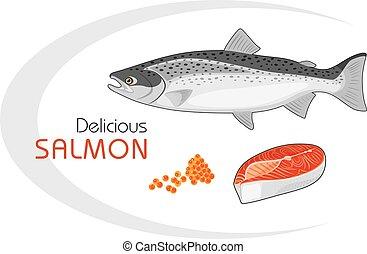 Delicious salmon. Vector illustration