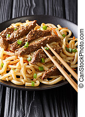 Delicious teriyaki beef with udon noodles, carrots and green onions close-up on a plate. vertical