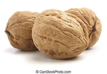 delicious walnut isolated on a white background