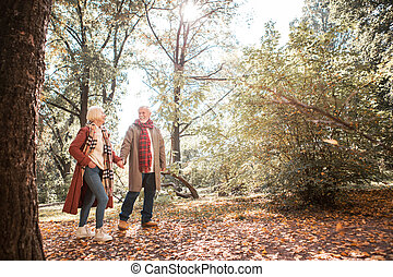 Delighted happy couple enjoying their autumn day