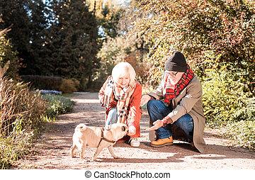 Delighted nice elderly couple feeding the dog