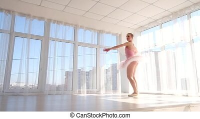 Delightful female ballet dancer in pink tutu practicing and...
