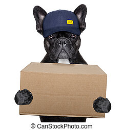 delivery post dog - postal dog delivering a big brown...