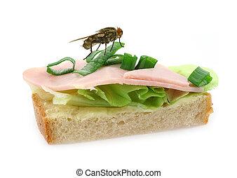 delizioso, mosca, panino, seduta, prosciutto, casa