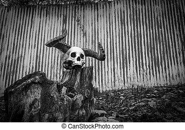 demônio, cranio, chifres, dia das bruxas