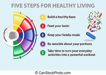 demi-cercle, vivant, coloré, sain, graphique, projection, cinq, étapes