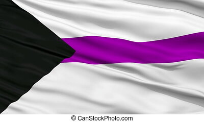 Demisexual Close Up Waving Flag - Demisexual Flag, Close Up...