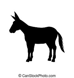 democrata, partido político, animal