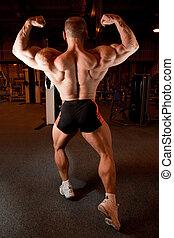 demonstra, bodybuilder, seu, costas, músculos
