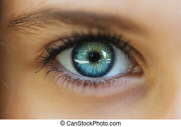 den, ögon, närbild