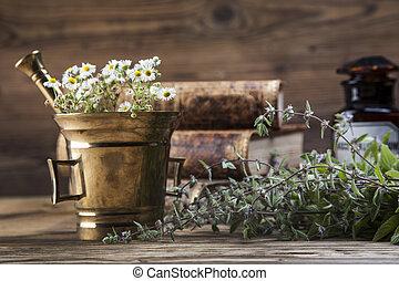 den, ancient, naturlig lægekunst, urter, og, lægekunster
