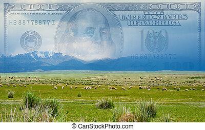 den, begrepp, av, finansering, boskap