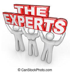 den, experter, professionell, folk, hjälp, lösa, problem
