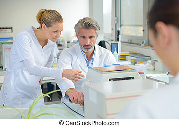 den, forskning laboratorium