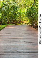 den, gå, väg, i parken, hos, thailand.