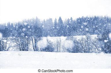 den, krajina, zima