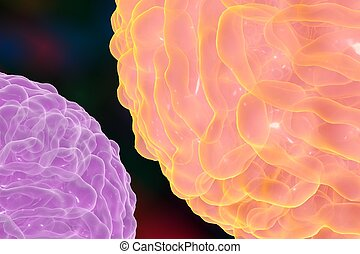 Dengue virus which causes yellow fever