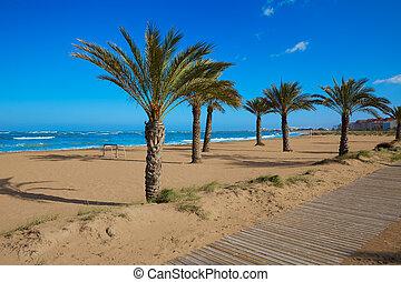 Denia beach Las Marinas with palm trees Alicante - Denia...