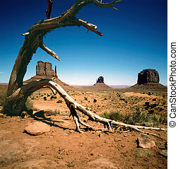 denkmal tal, arizona