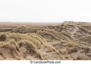 Denmark Nature landscape