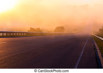 dense early morning fog in wold at summer highway near river with guard rails