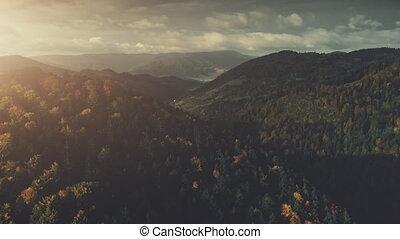 Dense forest mountainous land scenery aerial view - Dense...