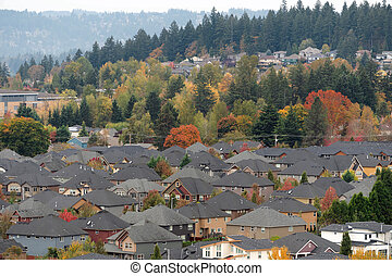 densely, povoado, suburbano, vizinhança residencial