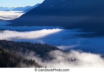 denso, mattina, nebbia, in, alpi