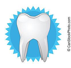 dent, illustration, vecteur, blanc