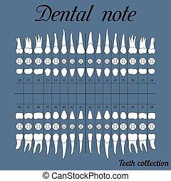 dentaal, aantekening, voor, dentaal, kliniek