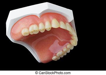 dentadura llena, dental, placa, en, fondo negro